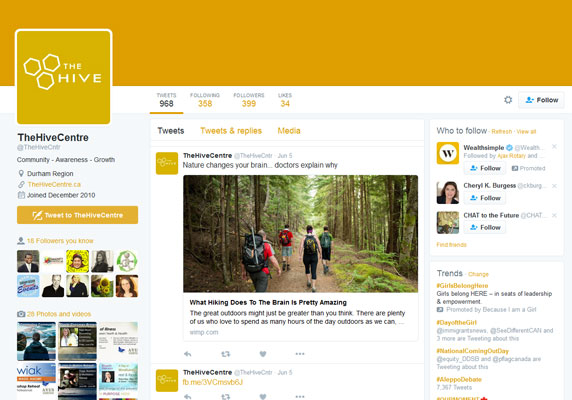1COMMUNITY1 - The Hive Twitter Profile Design